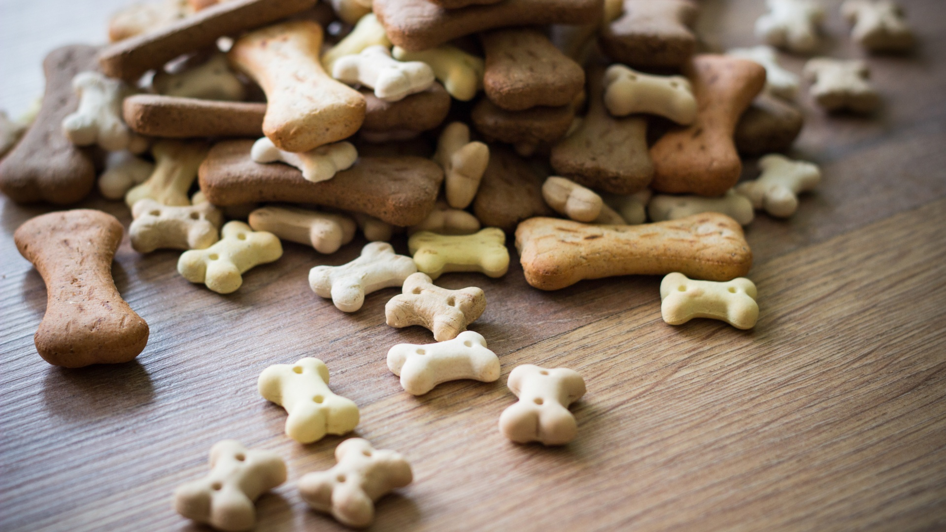 Pet Treats - rendered.jpg